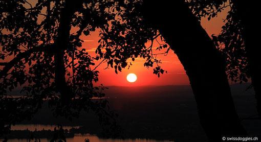einen traumhaften Sonnenuntergang