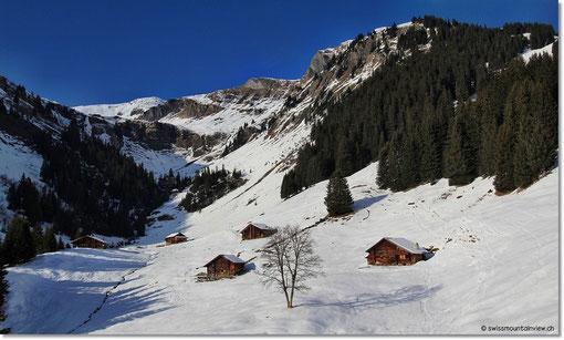 Sie konnten mit den Skiern noch bis ganz hinunter fahren. Herrlich war's und nun geht's wieder heim in den Frühling :)