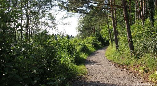 man kann hier herrlich spazieren gehen...