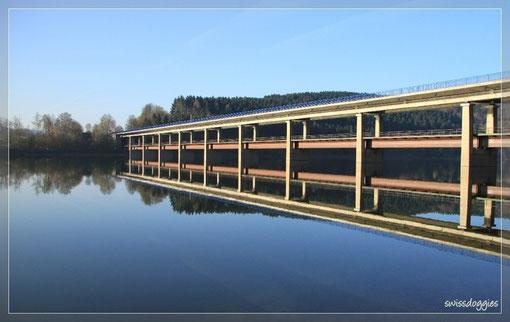 Spiegelbild im See - aus 2 werden 4 Spuren.