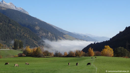 Am Mittwoch hängt der Nebel auch in Flims ganz tief und wir fahren nach dem ersten Kaffee gleich los Richtung Lukmanierpass. Es dauert bis Disentis, bis wir die weisse Suppe endlich los sind.