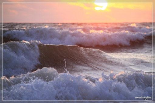 Die Sonne, die im Meer versinkt, das Farbenspiel, immer wieder ein Erlebnis.