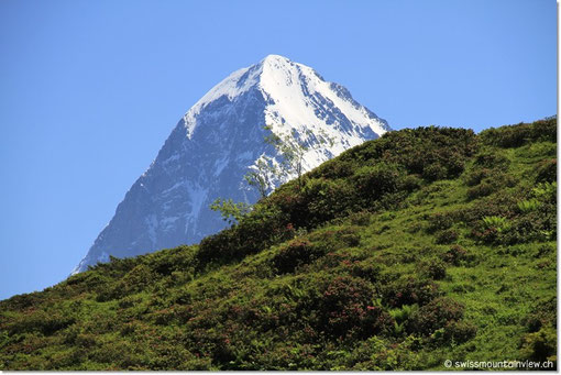 Mal verschwinden die Schneeberge, um bald darauf hinter einem kleinen Hügel wieder aufzutauchen.