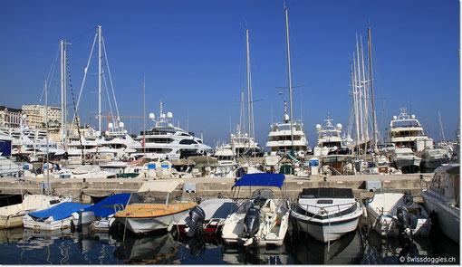 wir schlendern durch den Hafen...