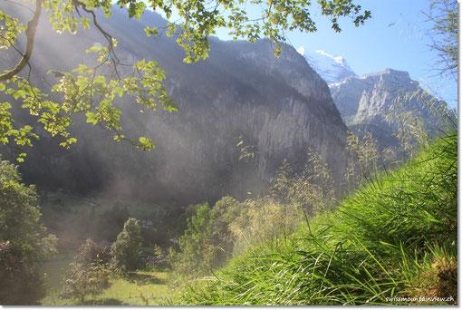 Die Sonne lässt leichten Nebel aus der Wiese steigen.