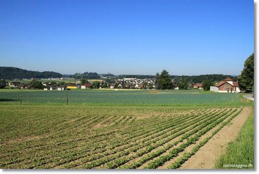 In Othmarsingen, AG, machen wir einen kurzen Spaziergang.