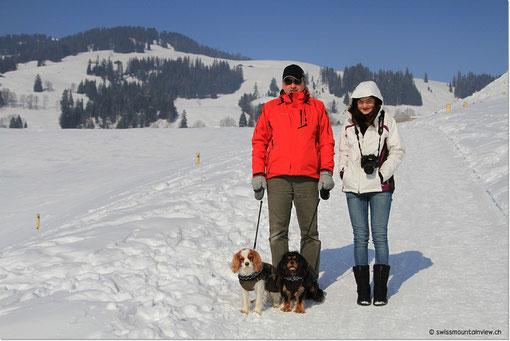 Kalte Winterwanderung von Saanenmöser nach Gstaad.