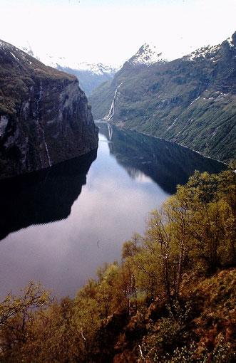 Feirangerfjord