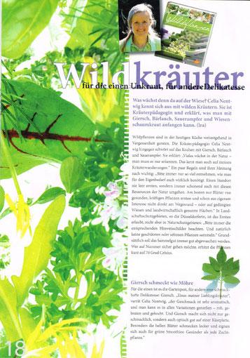 Magazin der Bergischen Krankenkasse, 1. Quartal 2013