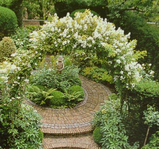 Rosenbogen mit weiß blühenden Kletterrosen, in voller Büte