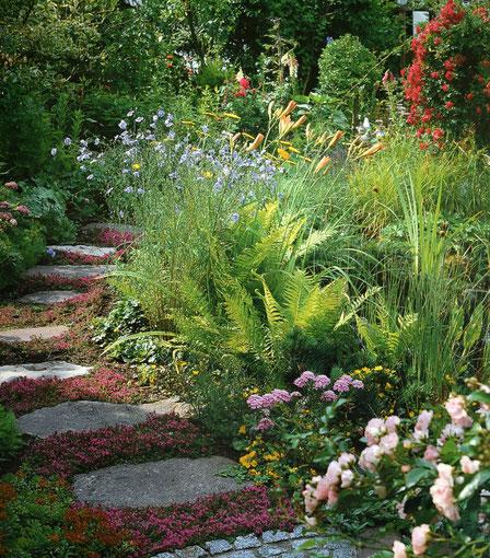 Gartenweg mit großen Trittplatten und Staudenbeeten