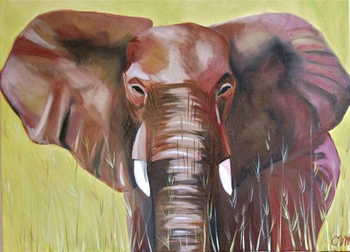 éléphant dans les herbes, huile sur toile 54x65, 2011