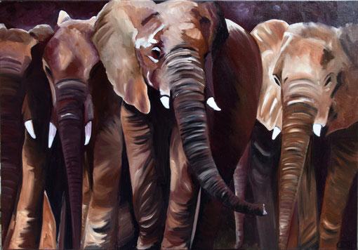Charge d'éléphants, huile sur toile 2017