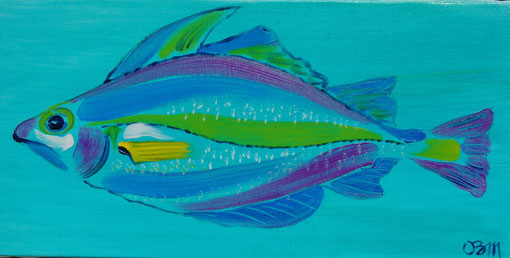 Poisson parme sur turquoise, huile sur toile 20 x 30, 2010
