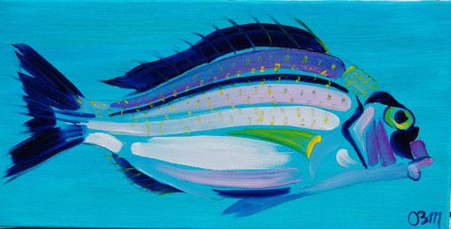Poisson bleu sur turquoise, huile sur toile 20 x30, 2010