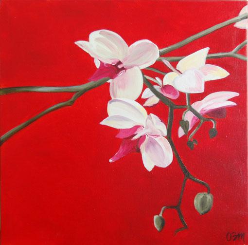 Orchidées, huile sur toile 50x50, 2010
