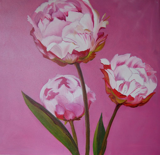 Pivoines roses, huile sur toile 50 x 50, 2010