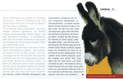 Pegasus - Freizeit im Sattel (Ausgabe Oktober 2009)