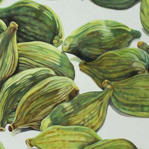 elettaria cardamomum II 2017 60x70 oil/canvas