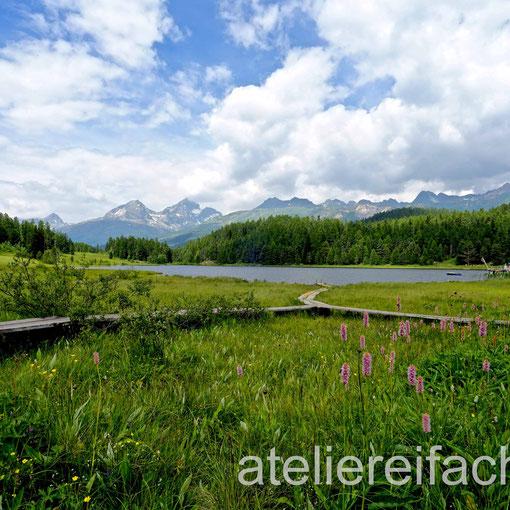 Stazersee bei St. Moritz im Sommer, Engadin, CH
