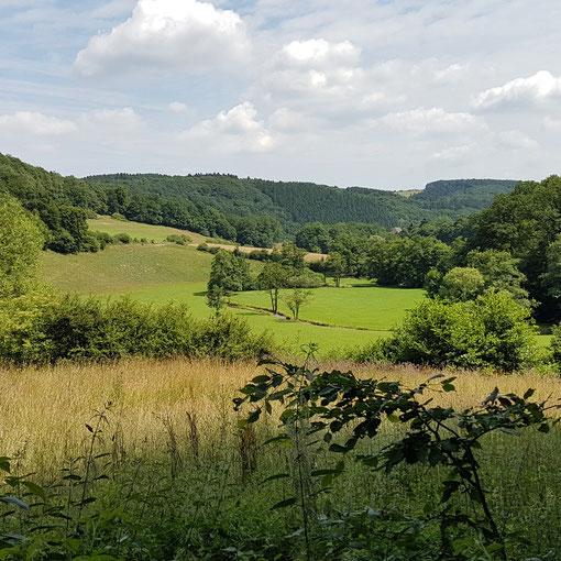 Katrin Sporenberg - Rundweg in Ennepetal, Nähe Breckerfeld  Holle