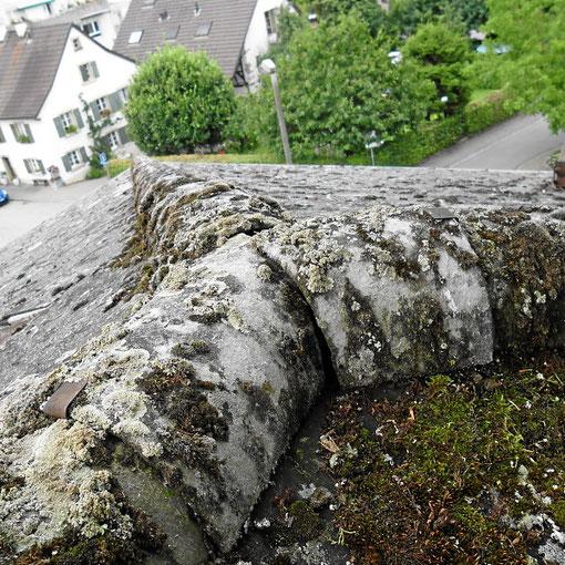 Dachziegelreinigung rechtzeitig durchführen, sonst muss eine Dachdeckerei eine (teure) Neueindachung durchführen