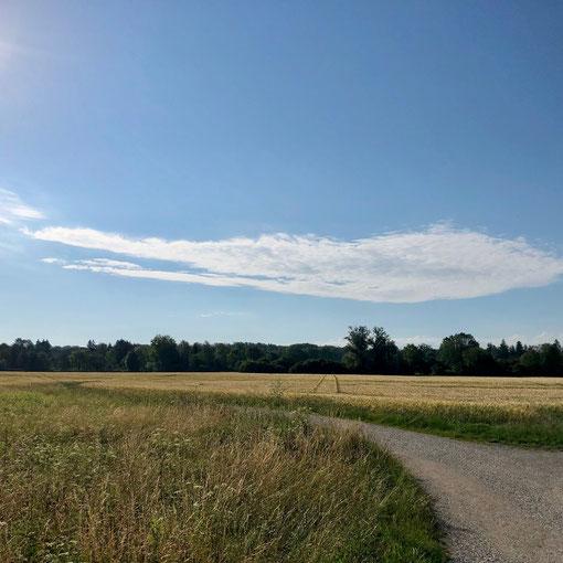 flaches Land und lange Geraden prägen den Beginn des Ammer-Amper Radwegs (AAR)