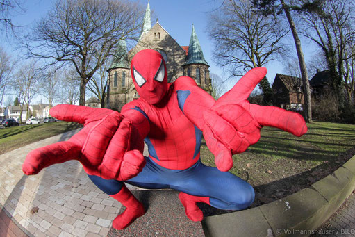 Freundliche Spinne