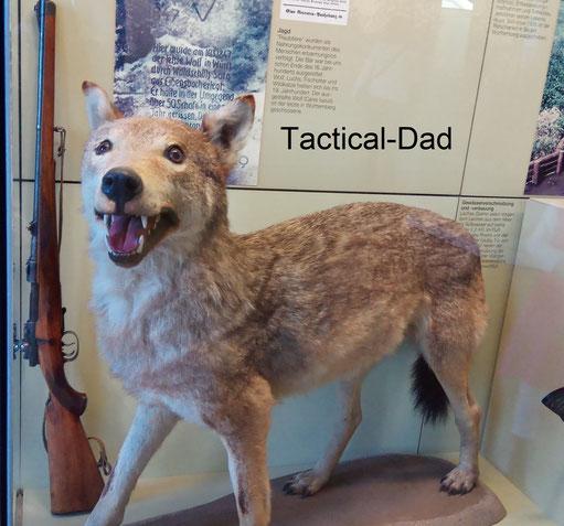 Dieser Wolf war der letzte der in Württemberg gelebt hat. Er riß in einem Jahr 50 Schafe und wurde 1847 erlegt.