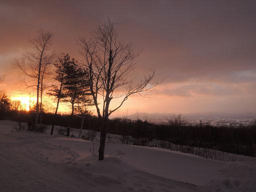 この後、お日さまは上空の雲に隠れ、雪がちらつき始めました。一瞬ですが拝めてよかった~!