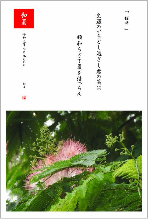 七月九日の日その一 2019/07/09制作  2019/07/02合歓木撮影