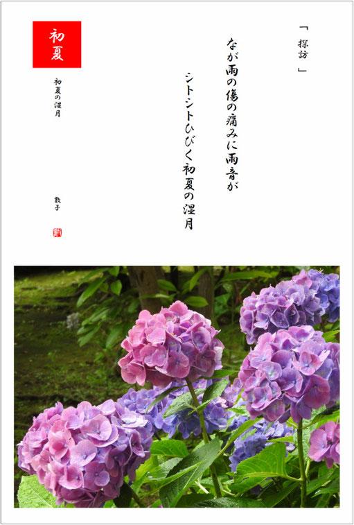 初夏の湿月 2019/07/17制作  2019/0702アジサイ撮影