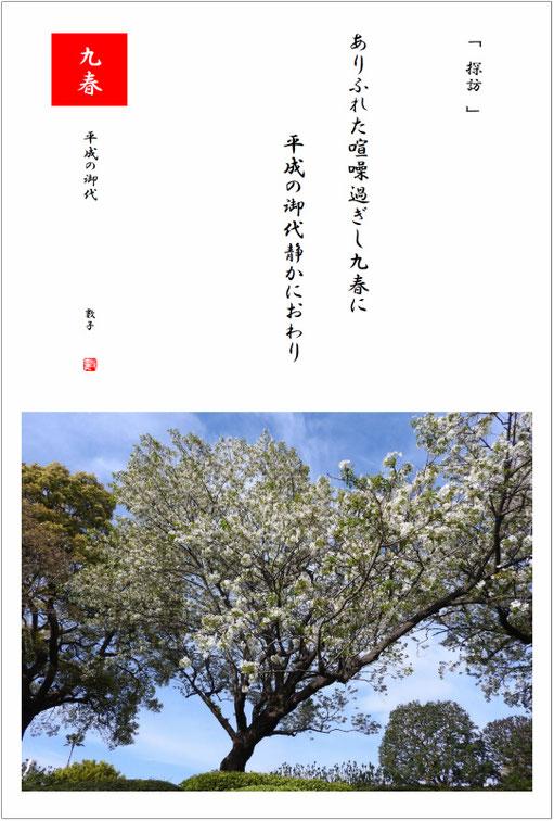 平成の御代 2019/04/07制作  2019/04/05撮影横浜山手の桜