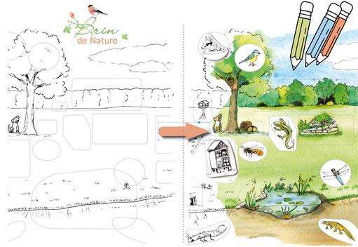 jardin, naturel, mare, jeu, enfant, coloriage, nature, outil pédagogique, potager