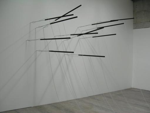 call me ... ahab. Centre d'art en l'Ile, Genève 2007