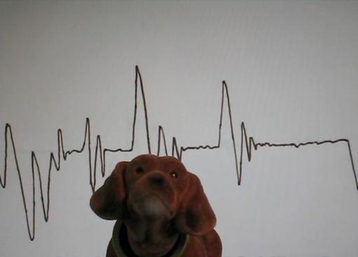 Dr. Kat, Detektore.