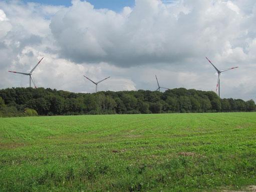 Die Naturschutzverbände waren machtlos: Windräder im Landschaftsschutzgebiet!  Foto H. Schweers