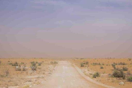 ein Sandsturm im Kgalagadi Transfrontier Park (Dune Road)