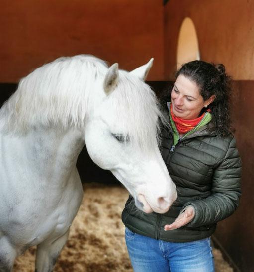 Diana Tiebes, Osteopathie für Pferde