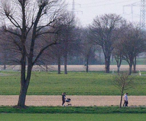 100%-Crop, Landschaftsaufnahme, NIKON Z 7, AF-S 28-70mm 1:2,8D ED bei 70mm. Foto: bonnescape.de