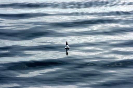 Eine Flasche, die im Meer schwimmt