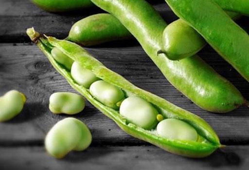 bønner oppskrift vegetarisk plantebasert