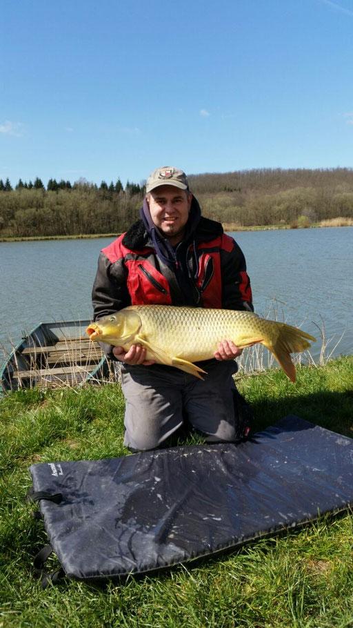 Schuppenkarpfen 11,5 kg, 31 03 2015  Heinz R. Ternitz NÖ