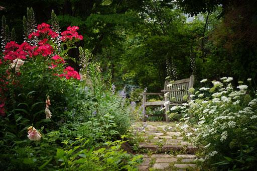 Kitayama  Botanical garden Nishinomiya 2017