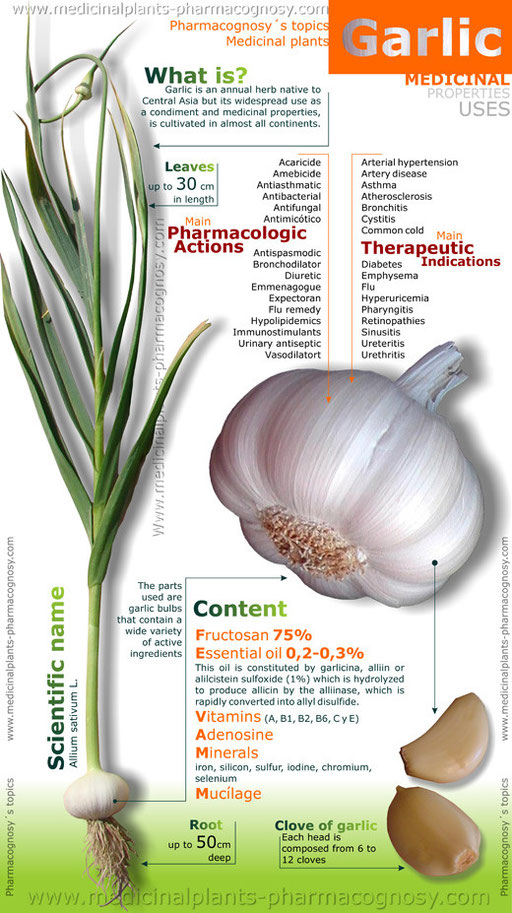 garlic properties uses