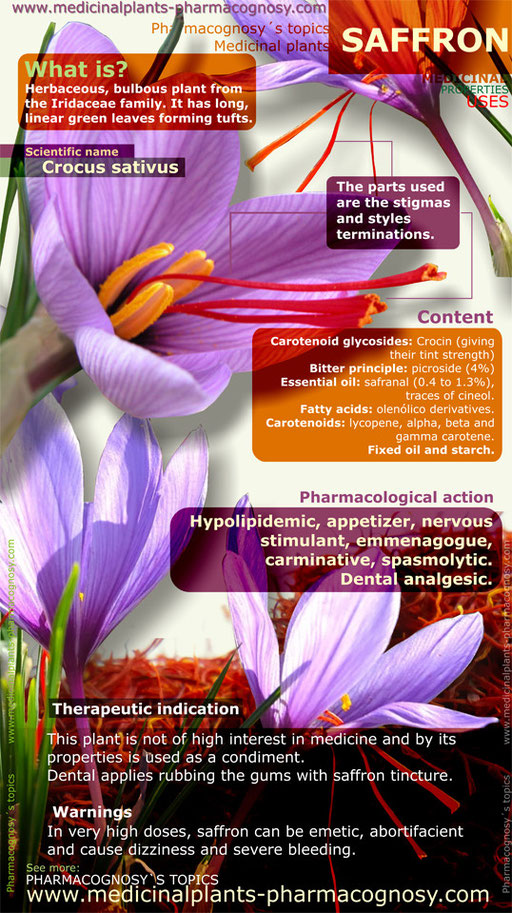 Saffron flowers benefits