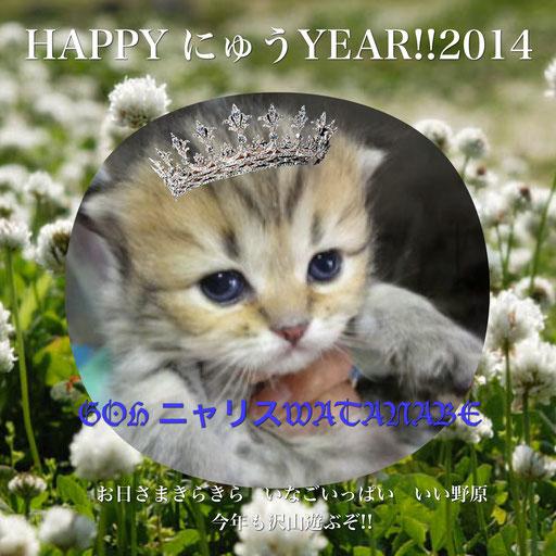 2014新年GOHニャリス