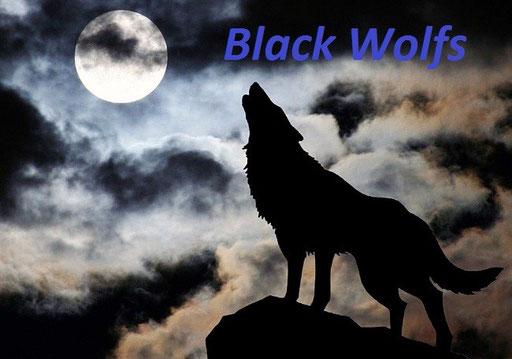 Волк с рожденья зверь-убийца, И быть может потому Бродит серая волчица, Не даваясь никому...