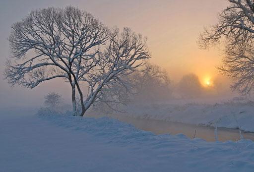 Wintersonne, Foto: Annelies Neumann