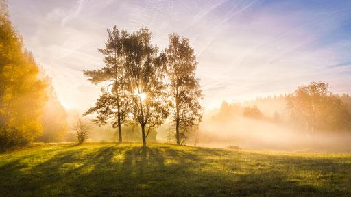 ein Herbstmorgen, Foto: Wilhelm Daubner